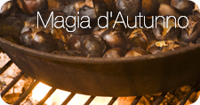 Suggestioni d'Autunno